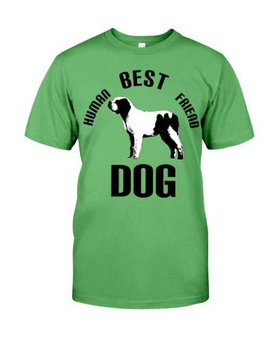 Dog Best Human Friend