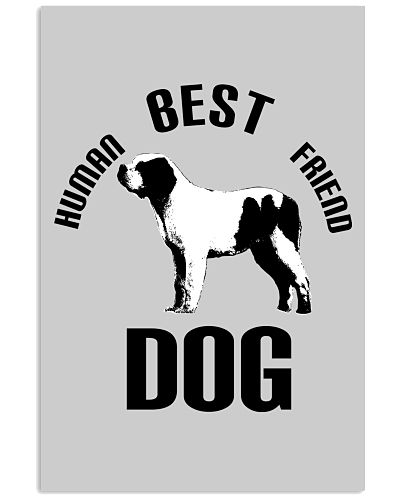 Dog Best Human Friend