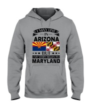 Arizona Hooded Sweatshirt thumbnail