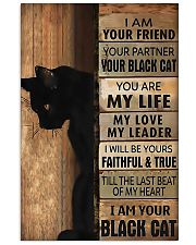 BLACK CAT poster 11x17 Poster front