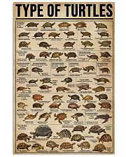 TYPE OF TURTLE 11x17 Poster front