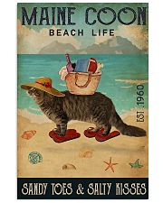 Maine Coon 11x17 Poster front