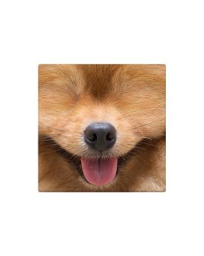 Mask Happy - Dog B2