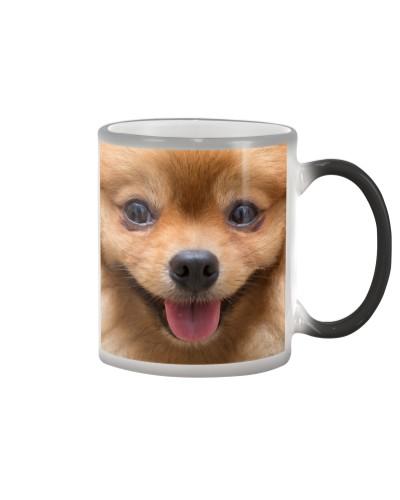 Mask Happy - Dog B