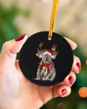 Koala Christmas Circle ornament - single (porcelain) aos-circle-ornament-single-porcelain-lifestyles-09