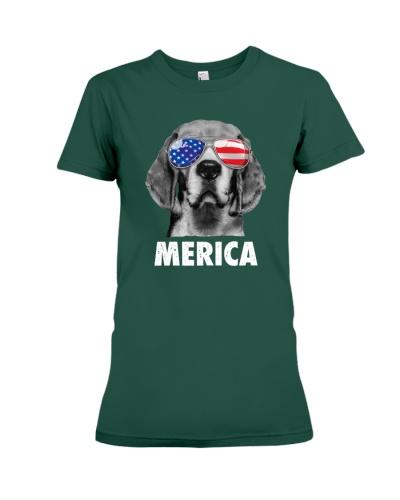 Beagle 4th of July