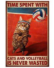 Time Spent With Cats And Volleyball Is Never Wasted Poster-Cats And Volleyball Lovers Birthday Xmas Gift-Poster For Cats And Volleyball Lovers 11x17 Poster front
