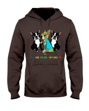 171360 Dog It's ok to be different dog hoodie Hooded Sweatshirt front