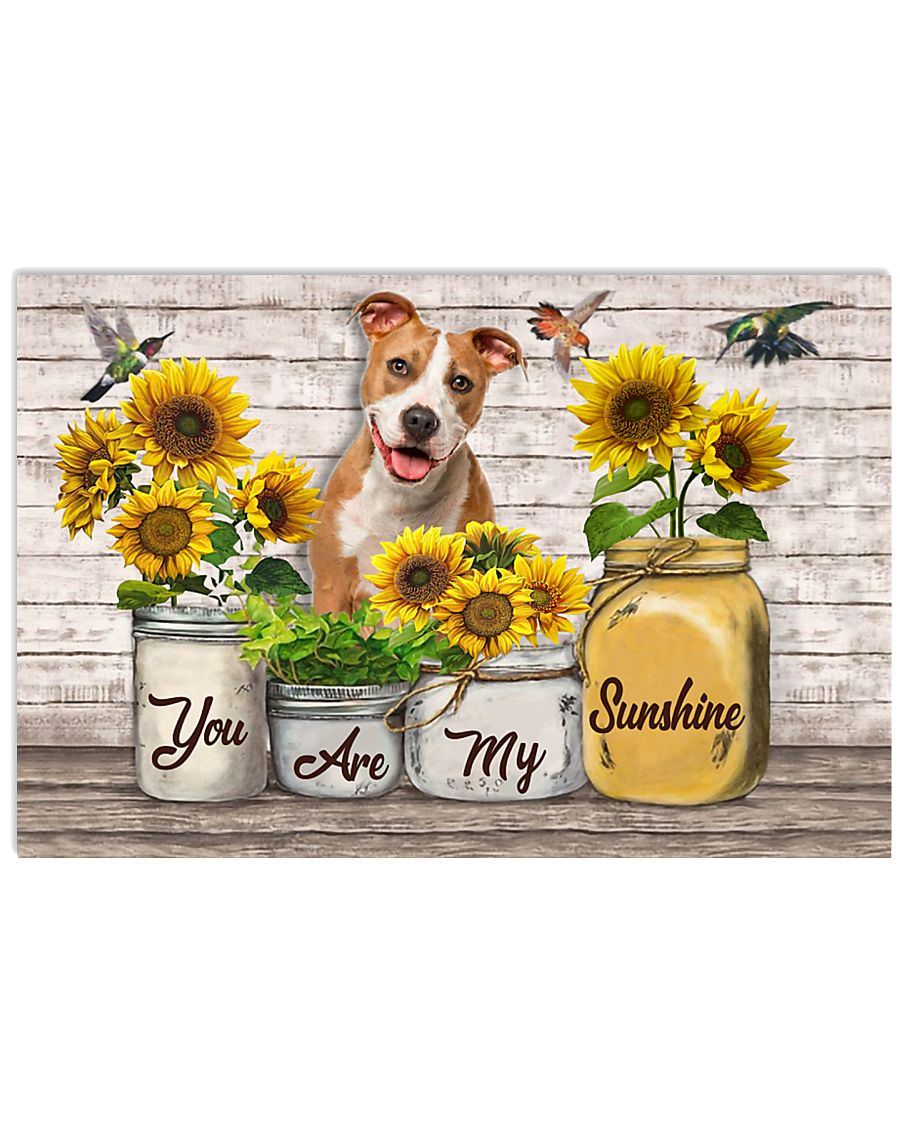 YOU ARE MY SUNSHINE - PITBULL 17x11 Poster