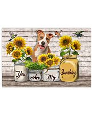 YOU ARE MY SUNSHINE - PITBULL 17x11 Poster front