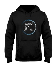 Sagittarius Zodiac Fundamental Hooded Sweatshirt thumbnail