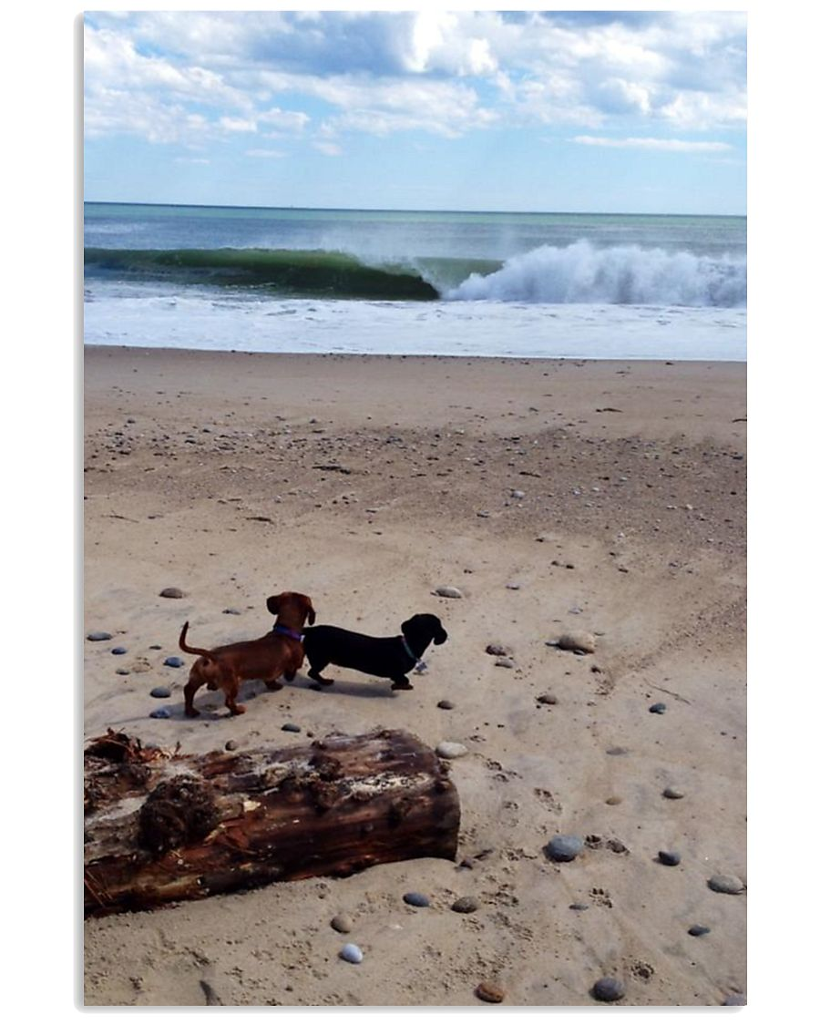 Dachshunds at the beach 16x24 Poster