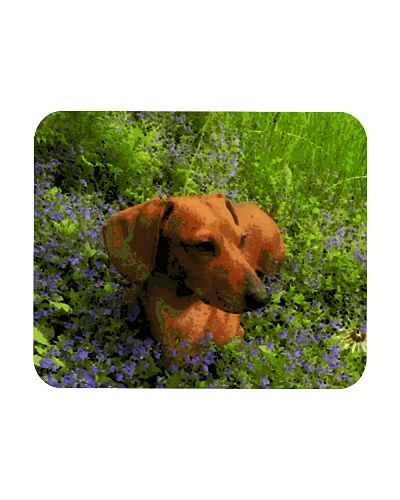 Dachshund in field of flowers