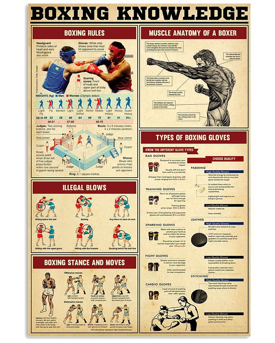 Boxing Knowledge 2 24x36 Poster