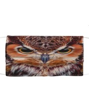 Owl Cloth face mask front
