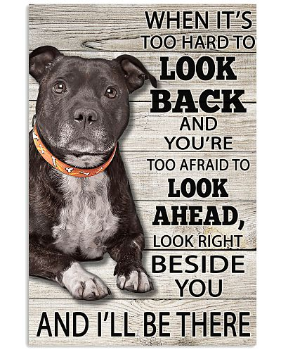 Staffordshire Bull Terrier Look Right