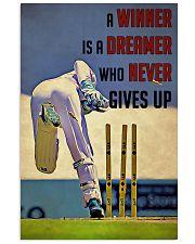 Cricket Winner 24x36 Poster front
