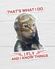 Cat Fly And Know Things Sticker - Single (Vertical) aos-sticker-single-vertical-lifestyle-front-01