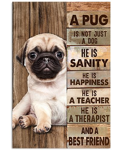 A Pug Is Not Just A Dog