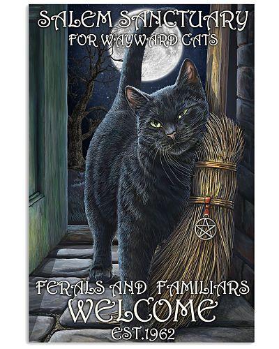 Cat Salem Sanctuary 2