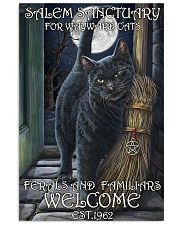 Cat Salem Sanctuary 2 24x36 Poster front