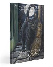 Cat Salem Sanctuary 2 20x30 Gallery Wrapped Canvas Prints thumbnail