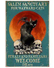Cat Salem Sanctuary 24x36 Poster front