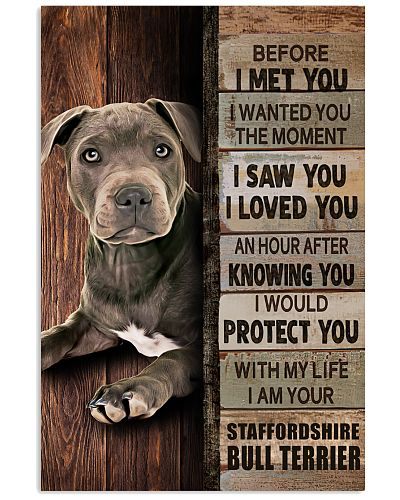 Blue Staffy Before I Met You