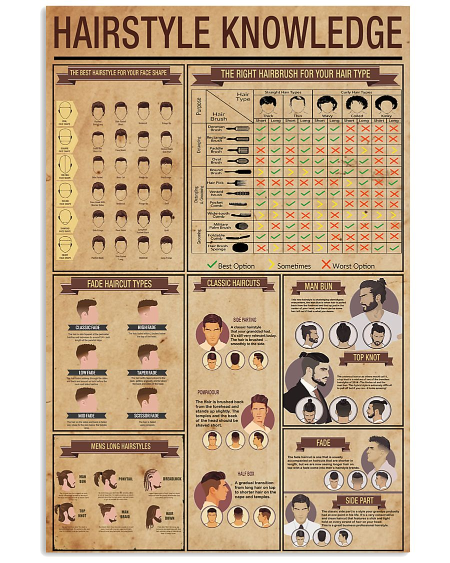 Hairstyle Knowledge 24x36 Poster