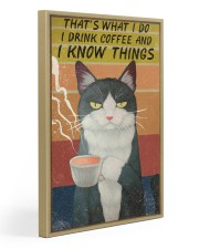Cat I Drink And I Know Things Vintage 20x30 Gallery Wrapped Canvas Prints thumbnail