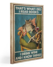 Cat Read Books Drink Cocktail 20x30 Gallery Wrapped Canvas Prints thumbnail