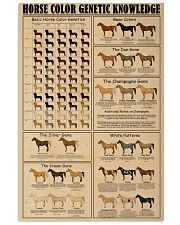 Horse Color Genetic Knowledge 16x24 Poster front