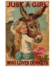 Just A Girl Loves Donkeys  24x36 Poster front