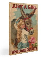 Just A Girl Loves Donkeys  20x30 Gallery Wrapped Canvas Prints thumbnail