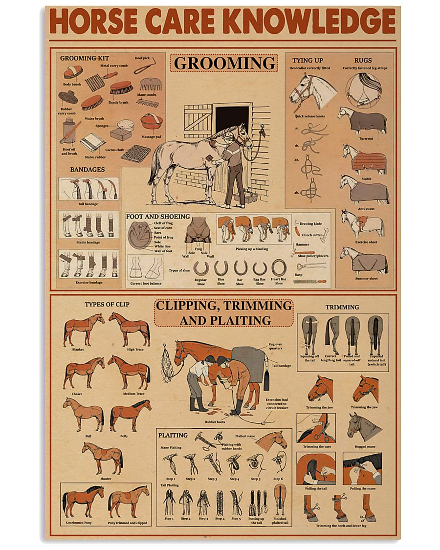 Horse Care Knowledge 24x36 Poster