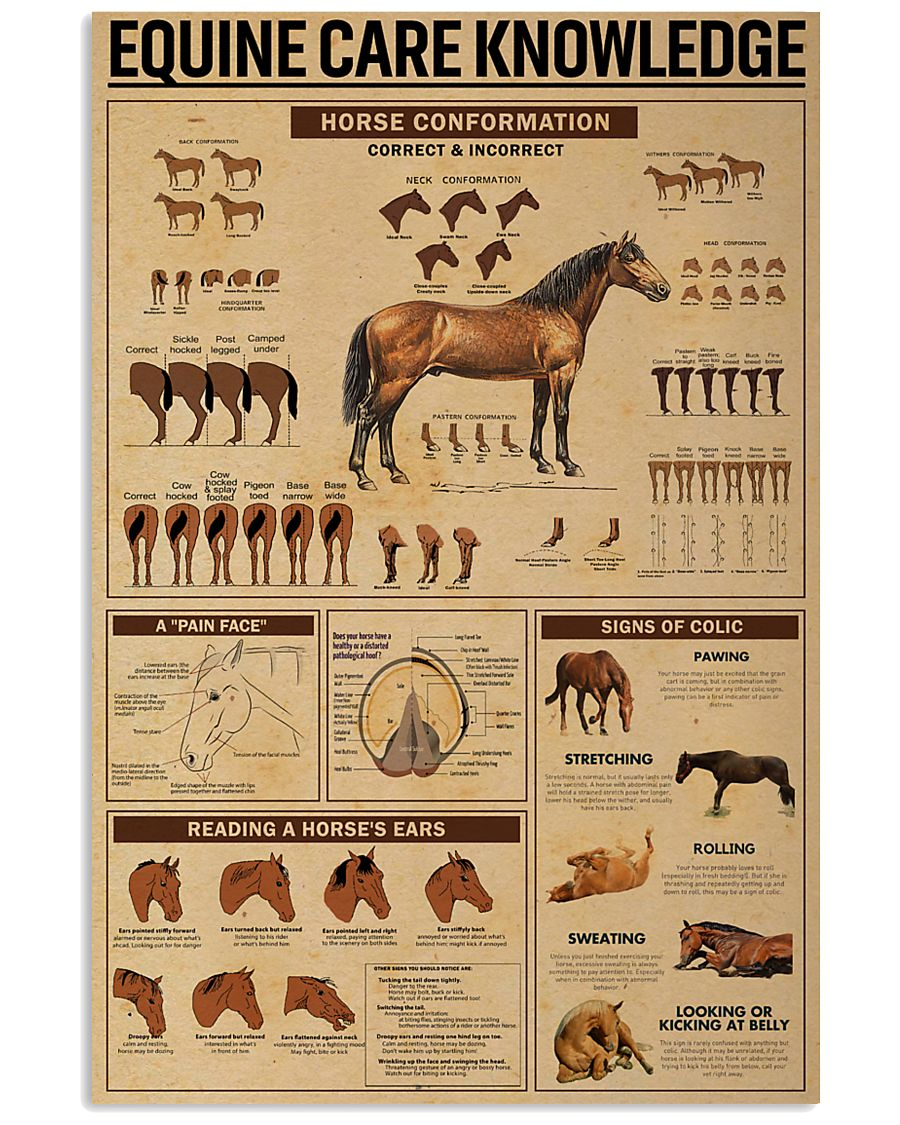 Equine Care Knowledge 24x36 Poster