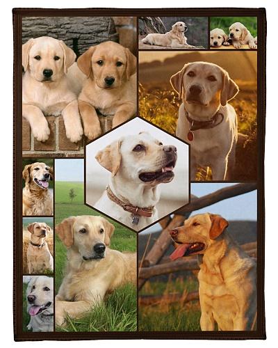 Labrador Funny Blanket Faces Graphic Design