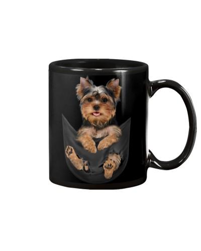 Yorkshire Terrier In Pocket
