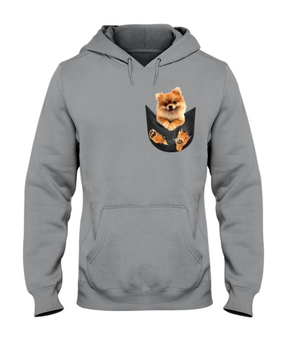 Pomeranian In Pocket