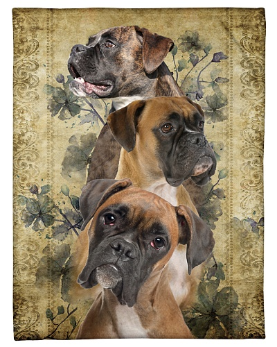 Boxer Funny Three Beauty Boxers Graphic Design