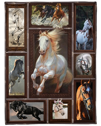 Horse Beauty Windows