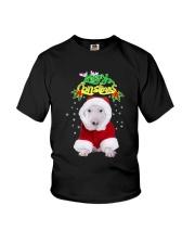 Bull Terrier Merry Xmas Youth T-Shirt thumbnail