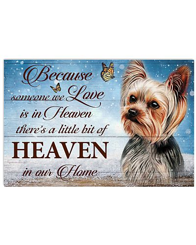 Yorkshire Terrier Heaven In Our Home