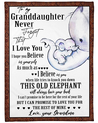 Elephant Granddaughter And Grandma