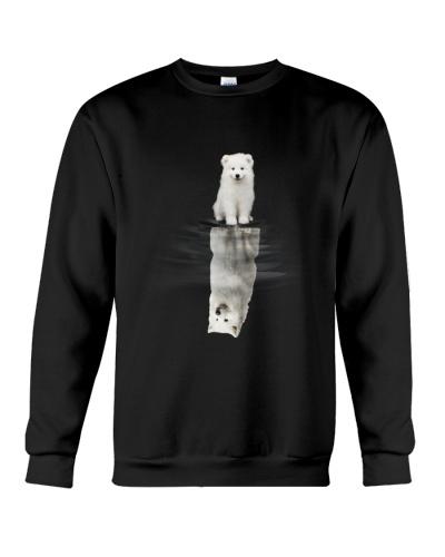 Samoyed Dream