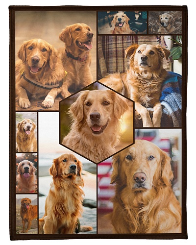 Golden Retriever Funny Faces Beauty Graphic Design
