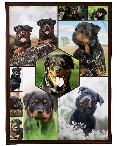 Rottweiler Funny Blanket Faces Graphic Design