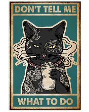 Cat Don't Tell Me Poster 16x24 Poster front