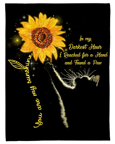 Cat Funny You Are My Sunshine Graphic Design