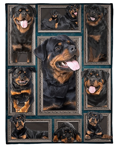Rottweiler Faces Blanket